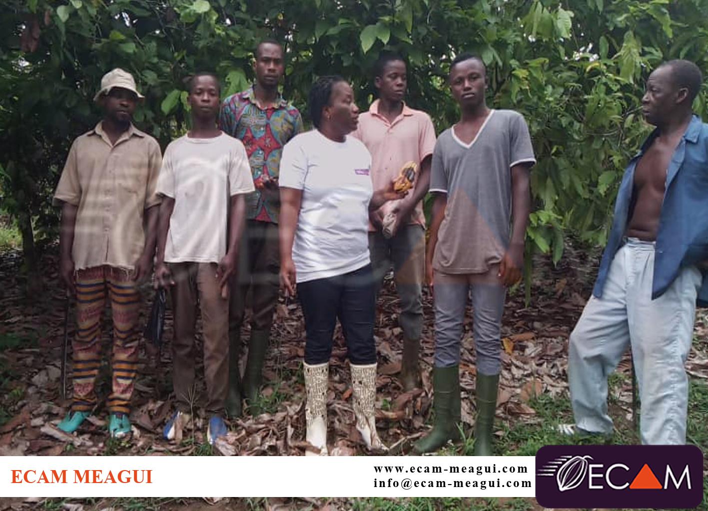 PCA : Visite des plantations